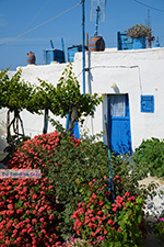 JustGreece.com Ano Meria Folegandros - Island of Folegandros - Cyclades - Photo 235 - Foto van JustGreece.com