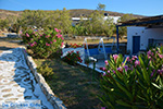 Livadi Folegandros - Island of Folegandros - Cyclades - Photo 272 - Photo JustGreece.com