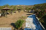 Livadi Folegandros - Island of Folegandros - Cyclades - Photo 273 - Photo JustGreece.com