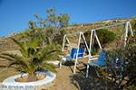Livadi Folegandros - Island of Folegandros - Cyclades - Photo 275 - Photo JustGreece.com