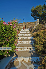 Livadi Folegandros - Island of Folegandros - Cyclades - Photo 278 - Photo JustGreece.com