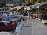 Agria Pilion - Magnesia - Thessaly - Greece  011 - Photo JustGreece.com