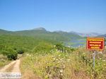 Wetland of Kalodiki (Epirus) Photo 1 - Photo JustGreece.com