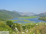 Wetland of Kalodiki (Epirus) Photo 3 - Photo JustGreece.com