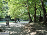 Voidomatis River near Aristi Photo 1 - Zagori Epirus - Photo JustGreece.com