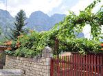 Traditional Village Papingo Photo 3 - Zagori Epirus - Photo JustGreece.com
