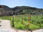 Mylopotamos | The Holly Mountain of Athos Photo 9 | Mount Athos Area Halkidiki | Greece - Photo JustGreece.com