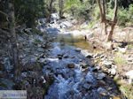 JustGreece.com Riviertje near Mylopotamos | The Holly Mountain of Athos | Mount Athos Area Halkidiki | Greece - Foto van JustGreece.com