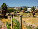 Kos town - Greece  Photo 4 - Photo JustGreece.com