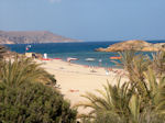 Vai Crete - Lassithi Prefecture - Photo 4 - Photo JustGreece.com