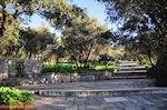 Te voet on the Acropolis - Photo JustGreece.com