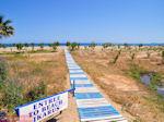 Naar the beach of Rethymnon - Photo JustGreece.com