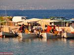 Vissersbootjes Eretria | Euboea Greece | Greece  - Photo JustGreece.com