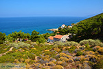 Avlaki Ikaria | Greece | Photo 3 - Photo JustGreece.com