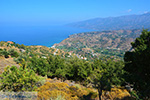 Kampos Ikaria | Greece Photo 1 - Photo JustGreece.com