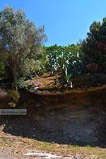 Moni Theoktistis near Kampos Ikaria | Avlaki Ikaria Photo 1 - Photo JustGreece.com
