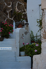 Ios town - Island of Ios - Cyclades Greece Photo 99 - Photo JustGreece.com