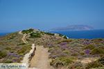 JustGreece.com Plakotos Ios - Island of Ios - Cyclades Greece Photo 250 - Foto van JustGreece.com