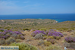 Plakotos Ios - Island of Ios - Cyclades Greece Photo 251 - Photo JustGreece.com