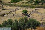 JustGreece.com Agia Theodoti Ios - Island of Ios - Cyclades Greece Photo 279 - Foto van JustGreece.com