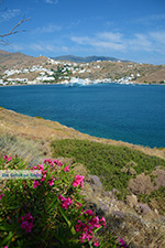 JustGreece.com Tzamaria beach Ios town - Island of Ios - Cyclades Greece Photo 446 - Foto van JustGreece.com