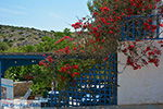 Island of Iraklia | Cyclades | Greece  | nr 61 - Photo JustGreece.com
