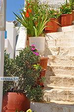 Island of Iraklia | Cyclades | Greece  | nr 86 - Photo JustGreece.com