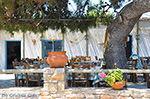 Island of Iraklia | Cyclades | Greece  | nr 137 - Photo JustGreece.com