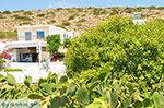 Island of Iraklia | Cyclades | Greece  | nr 148 - Photo JustGreece.com