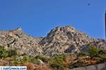 JustGreece.com Myrties - Island of Kalymnos -  Photo 16 - Foto van JustGreece.com