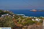 JustGreece.com Myrties - Island of Kalymnos -  Photo 17 - Foto van JustGreece.com