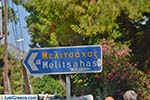 JustGreece.com Melitsachas Myrties - Island of Kalymnos -  Photo 19 - Foto van JustGreece.com