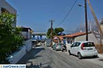 JustGreece.com Melitsachas Myrties - Island of Kalymnos -  Photo 21 - Foto van JustGreece.com