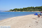 Golden Beach near Pefkochori | Kassandra Halkidiki | Greece  Photo 2 - Photo JustGreece.com