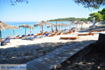 Golden Beach near Pefkochori | Kassandra Halkidiki | Greece  Photo 3 - Photo JustGreece.com