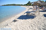 Golden Beach near Pefkochori | Kassandra Halkidiki | Greece  Photo 6 - Photo JustGreece.com