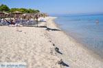 Golden Beach near Pefkochori | Kassandra Halkidiki | Greece  Photo 9 - Photo JustGreece.com