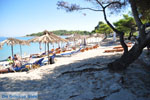 JustGreece.com Chrousso beach near Paliouri | Kassandra Halkidiki | Greece  Photo 1 - Foto van JustGreece.com