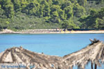 JustGreece.com Chrousso beach near Paliouri | Kassandra Halkidiki | Greece  Photo 2 - Foto van JustGreece.com