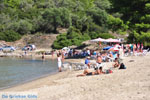 JustGreece.com Chrousso beach near Paliouri | Kassandra Halkidiki | Greece  Photo 7 - Foto van JustGreece.com