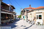 JustGreece.com Paliouri | Kassandra Halkidiki | Greece  Photo 7 - Foto van JustGreece.com