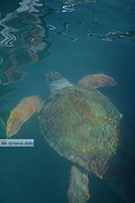 Megisti Kastelorizo - Kastelorizo island Dodecanese - Photo 74 - Photo JustGreece.com