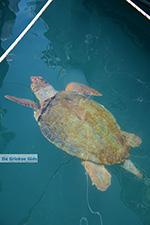 Megisti Kastelorizo - Kastelorizo island Dodecanese - Photo 75 - Photo JustGreece.com