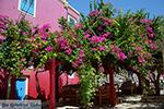 Megisti Kastelorizo - Kastelorizo island Dodecanese - Photo 129 - Photo JustGreece.com