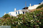 Vourkari | Kea (Tzia) | Greece Photo 1 - Photo JustGreece.com