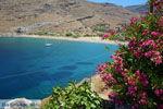 Pisses | Kea (Tzia) | Greece  Photo 3 - Photo JustGreece.com