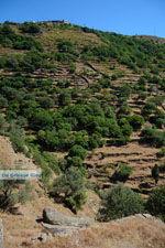 Ioulida (Ioulis of Chora) | Kea (Tzia) | Greece  Photo 67 - Photo JustGreece.com