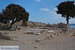 JustGreece.com Agios Stefanos - Island of Kos -  Photo 7 - Foto van JustGreece.com