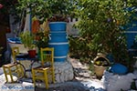 JustGreece.com Kos town - Island of Kos - Greece  Photo 4 - Foto van JustGreece.com