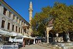 JustGreece.com Kos town - Island of Kos - Greece  Photo 48 - Foto van JustGreece.com